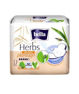 BELLA HERBS PLANTIGO 12 X36